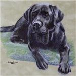 Classic Black Labrador