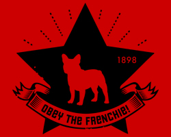 French Bulldog Star Icon