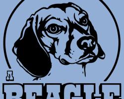 Beagle is My Homedog