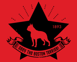 Boston Terrier Star Icon