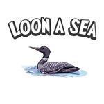 1605 Loon a Sea