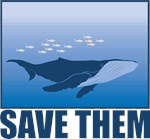 Save The Whales