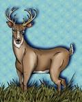 One Good-Eyed Deer
