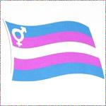 Transgender Pride v.2