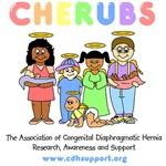 CHERUBS Logo (Pastel)