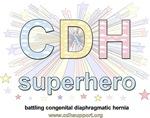 CDH Superhero Items