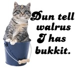 Don't Tell Walrus I Have Bucket!
