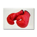 ...Boxing Gloves 4...