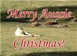 Aussie Christmas Cards & Gifts, Kangaroos!