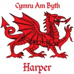 Harper Welsh Dragon