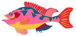 Pink Fish T-shirts & Gifts