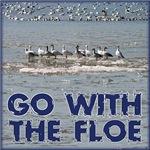 Go with the floe!