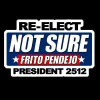 NOT SURE / FRITO PENDEJO 2512
