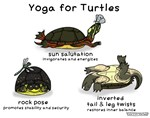 Yoga for Turtles