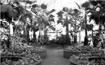 The Crystal Garden