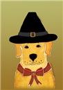 Thanksgiving Dog Labrador Retriever