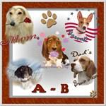 DOG BREED A-B