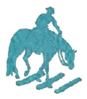 Teal trail horse with poles