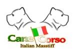 Cane Corso 2H