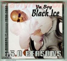 Y.B.B.I. (Ya Brotha Black Ice)