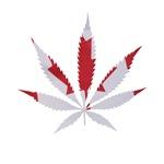 Pot leaf Canadian Flag