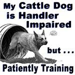 Cattle Dog Agility