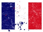 French Flag (Punk)