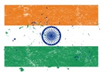 Indian Flag (Punk)
