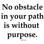 No Obstacle Design (All Products)