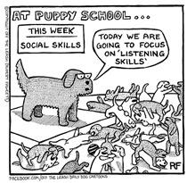Puppy School - Listening Skills