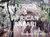 Africa & African Safari