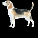 Love those beagles!