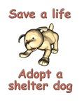 Save A Life, Adopt