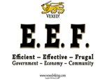 Effective Efficient Frugal!