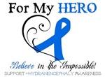 For My Hero