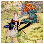 A RABBIT RUNS BY ALICE