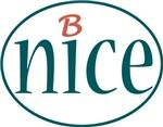B Nice store