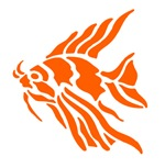 Orange Tiger Fish