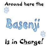 Basenji Charge