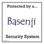 Basenji Security