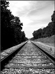 .railroad tracks. b&w