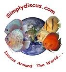 Classic Simplydiscus Logo