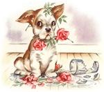 Vintage Oopsy Puppy