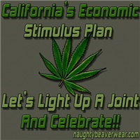 CA Economic Stimulus Plan
