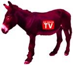 Ass Seen On TV