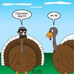 Turkey in Glasses