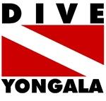 Scuba Dive Yongala