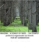 IMAGINE A FOREST...of Trees or Stumps...(click to