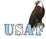 USAF Guardian Eagle