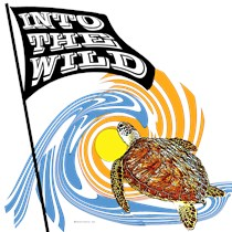 INTO THE WILD  - SEA TURTLE DESIGN